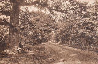 Hall Lane c. 1909