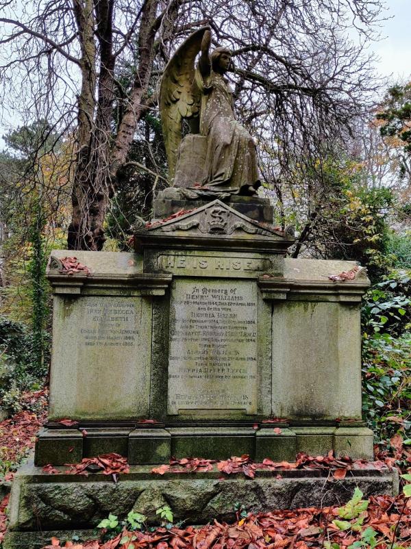 Williams grave 1a