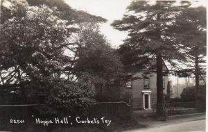 Hoppy Hall & Cedar tree, early 1920s