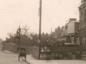 Rendle's original nursery around 1917